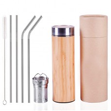 18 oz Coffee Fruit Water Tea Tumbler Thermos with Stainless Steel Infuser